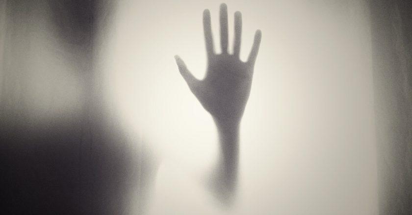 Korkmayı Nasıl Öğreniyoruz?
